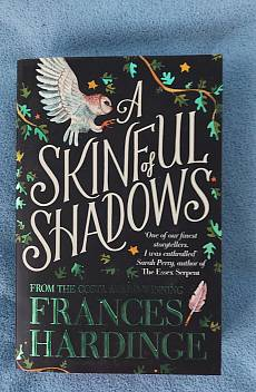 Книга A Skinful of Shadows