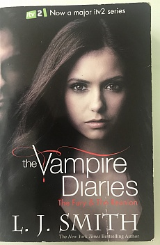 The Vampire Diaries - The Fury